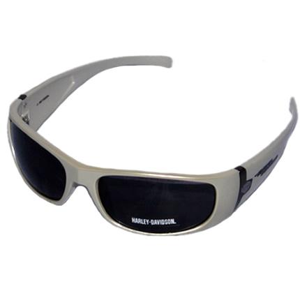 Harley-Davidson-HDS-581-Men-Sunglasses1.jpg