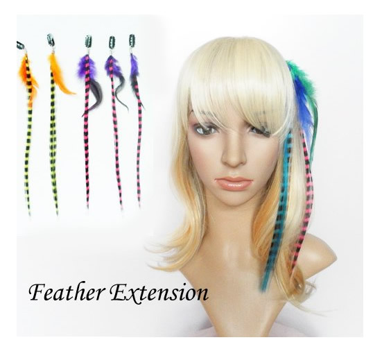 Mane colors clip in feather hair extensions set clip in feather hair extensions set cliponfeatherhairextension1g pmusecretfo Images