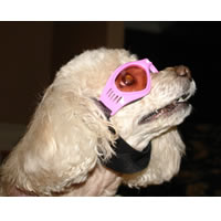 Dog-Sunglasses-Pink0.jpg