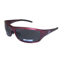 Harley-Davidson-HDS-531-Men-Sunglasses0.jpg