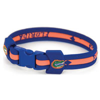 Eagles Wings Florida Gators Titanium Sport Bracelet